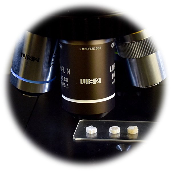 Microscope optics
